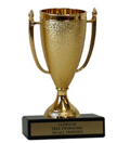 "5"" Cup Economy Trophy with Black Marble base"