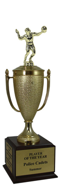 Champion Volleyball Cup Trophy